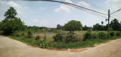 ที่ดิน 17042850 อุบลราชธานี เมืองอุบลราชธานี ไร่น้อย